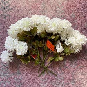 5 White Poms 🤍
